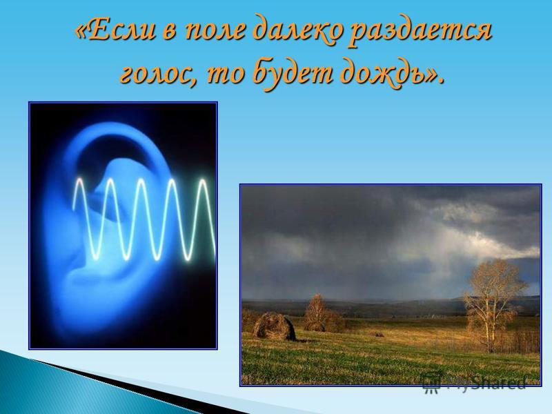 «Если в поле далеко раздается голос, то будет дождь».