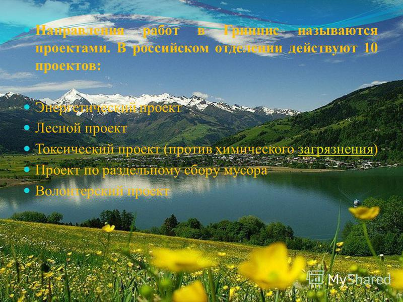 Направления работ в Гринпис называются проектами. В российском отделении действуют 10 проектов: Энергетический проект Лесной проект Токсический проект (против химического загрязнения)загрязнения Проект по раздельному сбору мусора Волонтерский проект