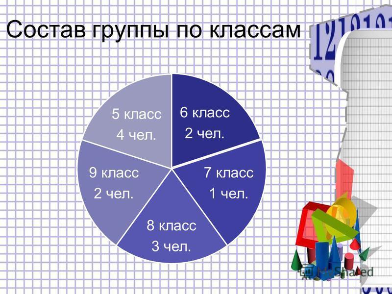 Состав группы по классам 6 класс 2 чел. 7 класс 1 чел. 8 класс 3 чел. 9 класс 2 чел. 5 класс 4 чел.