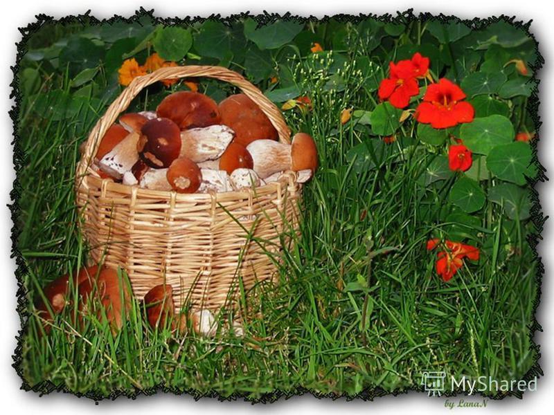 Можно в нём носить цветы И орехи, и грибы. Потрудись-ка ты немножко, Из лозы сплети… лукошко