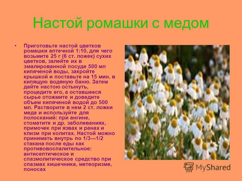 Настой ромашки с медом Приготовьте настой цветков ромашки аптечной 1:10, для чего возьмите 25 г (6 ст. ложек) сухих цветков, залейте их в эмалированной посуде 500 мл кипяченой воды, закройте крышкой и поставьте на 15 мин. в кипящую водяную баню. Зате