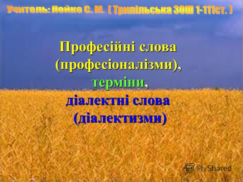 Професійні слова (професіоналізми), терміни, терміни, діалектні слова (діалектизми) (діалектизми)