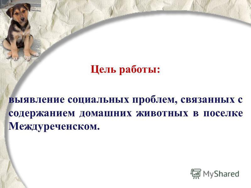 Цель работы: выявление социальных проблем, связанных с содержанием домашних животных в поселке Междуреченском.
