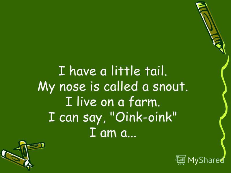I have a little tail. My nose is called a snout. I live on a farm. I can say, Oink-oink I am a...