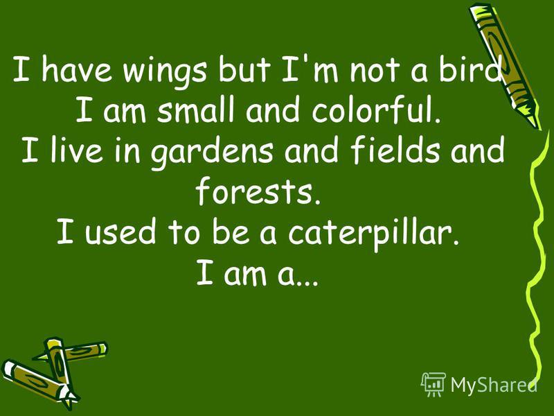 I have wings but I'm not a bird I am small and colorful. I live in gardens and fields and forests. I used to be a caterpillar. I am a...