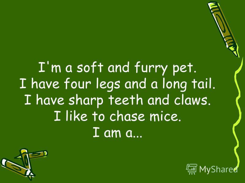 I'm a soft and furry pet. I have four legs and a long tail. I have sharp teeth and claws. I like to chase mice. I am a...