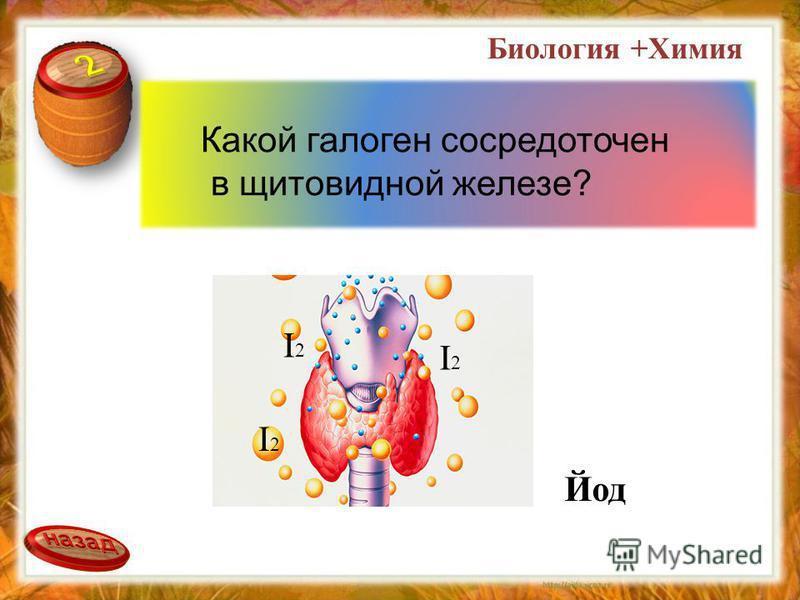 Какой галоген сосредоточен в щитовидной железе? Йод I2I2 I2I2 I2I2 Биология +Химия