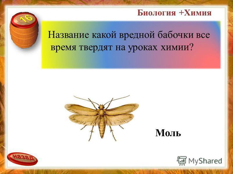 Название какой вредной бабочки все время твердят на уроках химии? Моль Биология +Химия