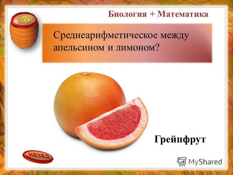 Среднеарифметическое между апельсином и лимоном? Грейпфрут Биология + Математика