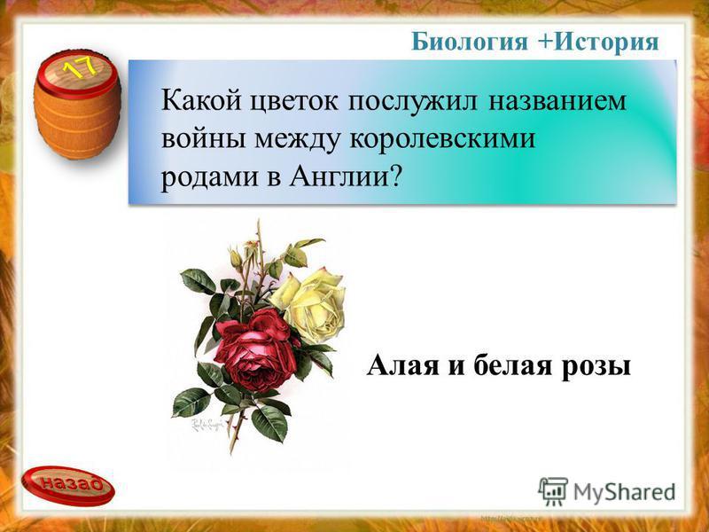 Биология +История Какой цветок послужил названием войны между королевскими родами в Англии? Алая и белая розы