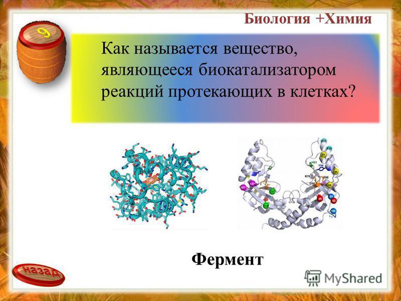 Биология +Химия Как называется вещество, являющееся биокатализатором реакций протекающих в клетках? Фермент