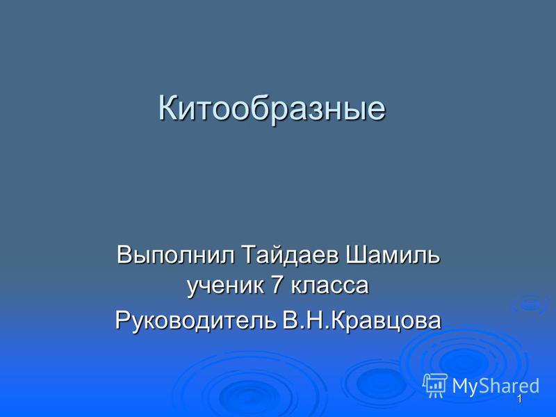 Китообразные Выполнил Тайдаев Шамиль ученик 7 класса Руководитель В.Н.Кравцова 1