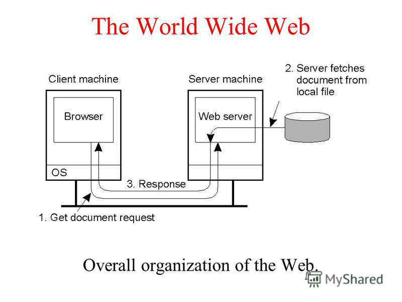 The World Wide Web Overall organization of the Web.