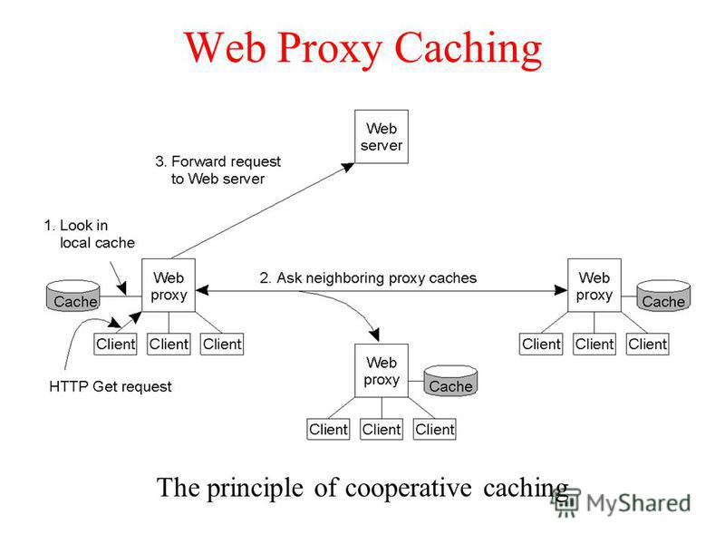 Web Proxy Caching The principle of cooperative caching
