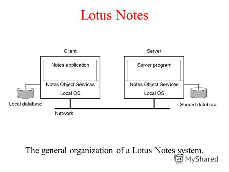 Lotus Notes The general organization of a Lotus Notes system.