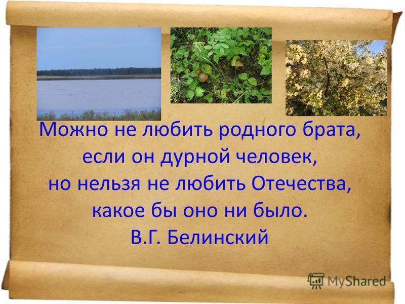 Можно не любить родного брата, если он дурной человек, но нельзя не любить Отечества, какое бы оно ни было. В.Г. Белинский