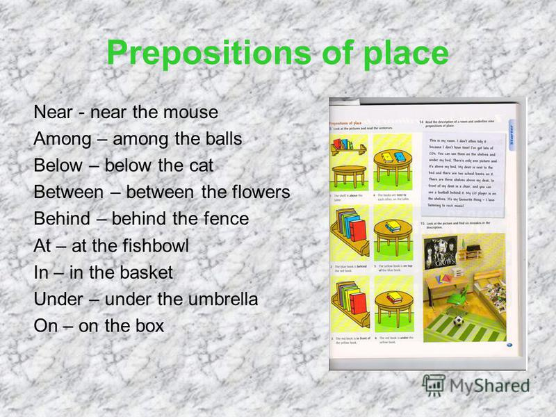 Prepositions of place Near - near the mouse Among – among the balls Below – below the cat Between – between the flowers Behind – behind the fence At – at the fishbowl In – in the basket Under – under the umbrella On – on the box