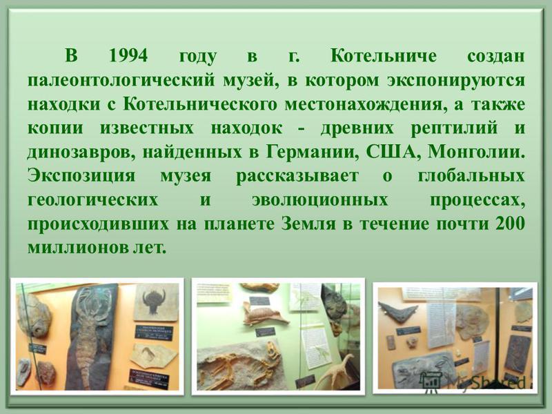 В 1994 году в г. Котельниче создан палеонтологический музей, в котором экспонируются находки с Котельнического местонахождения, а также копии известных находок - древних рептилий и динозавров, найденных в Германии, США, Монголии. Экспозиция музея рас