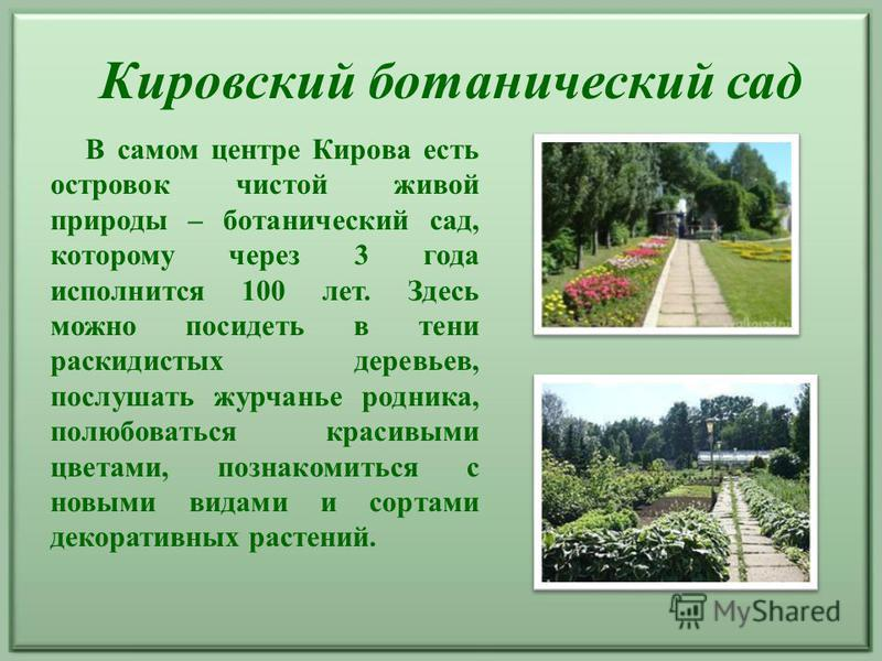 В самом центре Кирова есть островок чистой живой природы – ботанический сад, которому через 3 года исполнится 100 лет. Здесь можно посидеть в тени раскидистых деревьев, послушать журчанье родника, полюбоваться красивыми цветами, познакомиться с новым