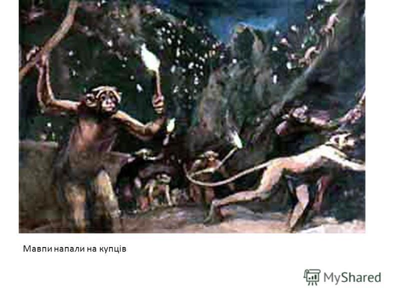Мавпи напали на купців