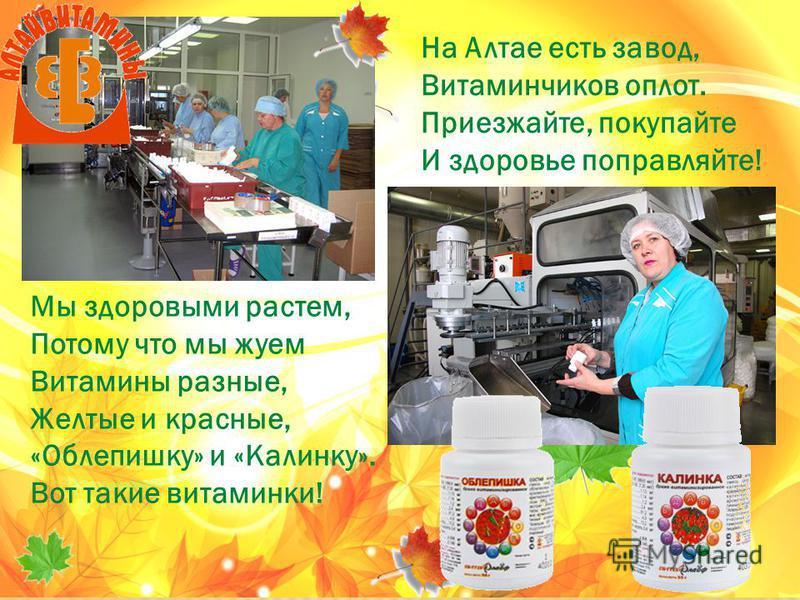 На Алтае есть завод, Витаминчиков оплот. Приезжайте, покупайте И здоровье поправляйте! Мы здоровыми растем, Потому что мы жуем Витамины разные, Желтые и красные, «Облепишку» и «Калинку». Вот такие витаминки!