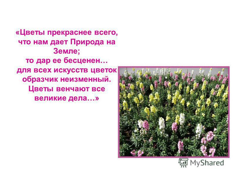 «Цветы прекраснее всего, что нам дает Природа на Земле; то дар ее бесценен… для всех искусств цветок образчик неизменный. Цветы венчают все великие дела…»
