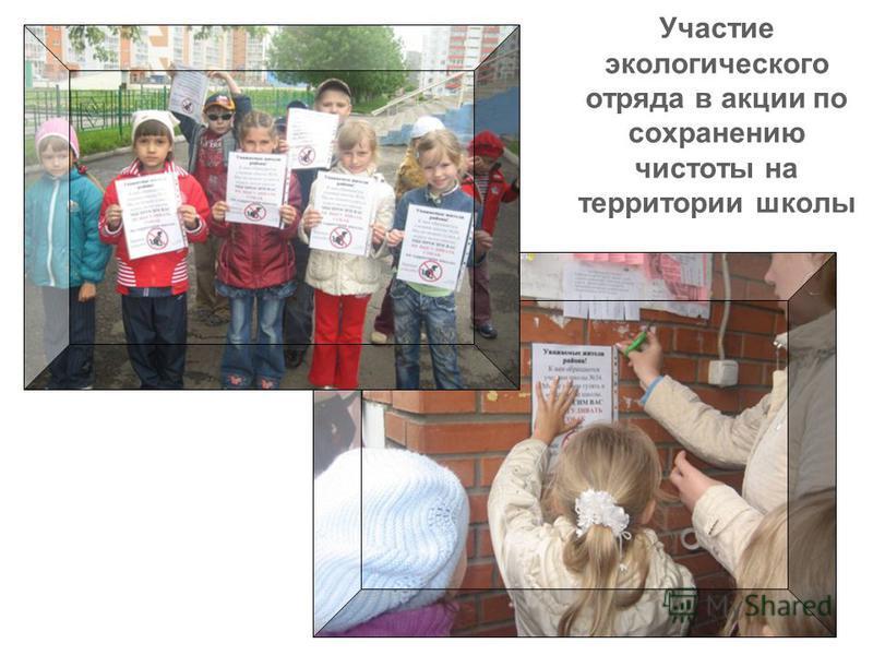 Участие экологического отряда в акции по сохранению чистоты на территории школы