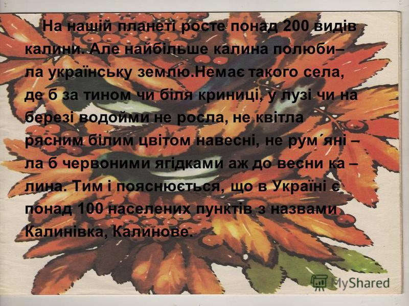 На нашій планеті росте понад 200 видів калини. Але найбільше калина полюби– ла українську землю.Немає такого села, де б за тином чи біля криниці, у лузі чи на березі водойми не росла, не квітла рясним білим цвітом навесні, не рум´яні – ла б червоними