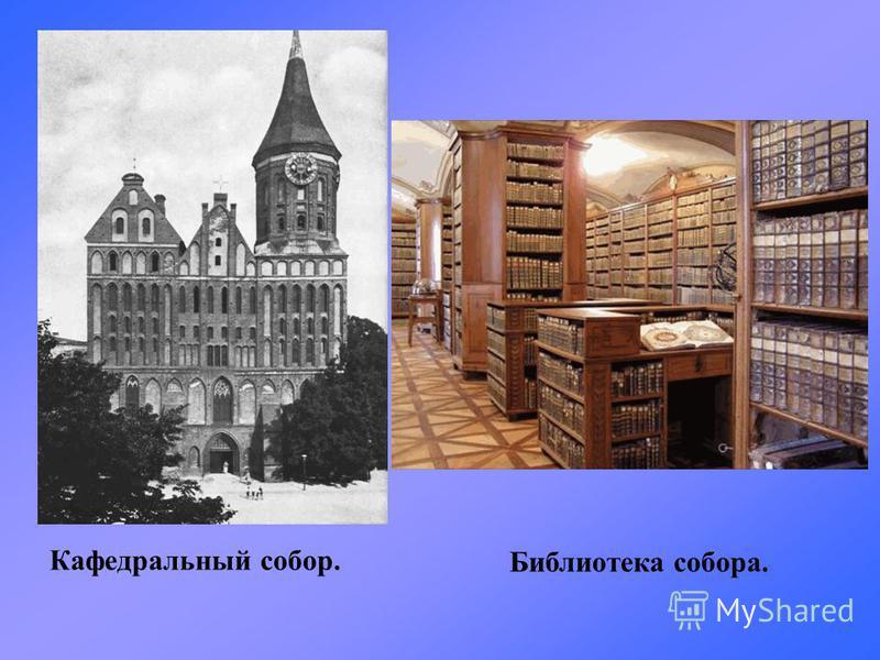 Кафедральный собор. Библиотека собора.