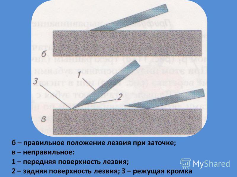б – правильное положение лезвия при заточке; в – неправильное: 1 – передняя поверхность лезвия; 2 – задняя поверхность лезвия; 3 – режущая кромка