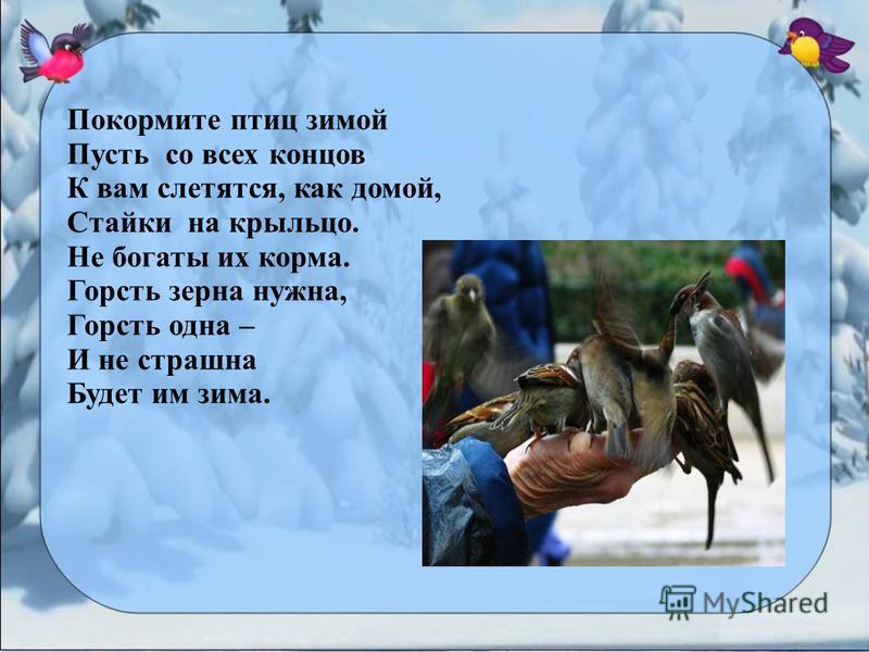 Покормите птиц зимой Пусть со всех концов К вам слетятся, как домой, Стайки на крыльцо. Не богаты их корма. Горсть зерна нужна, Горсть одна – И не страшна Будет им зима.