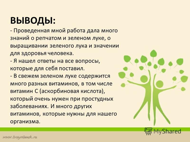 ВЫВОДЫ: - Проведенная мной работа дала много знаний о репчатом и зеленом луке, о выращивании зеленого лука и значении для здоровья человека. - Я нашел ответы на все вопросы, которые для себя поставил. - В свежем зеленом луке содержится много разных в
