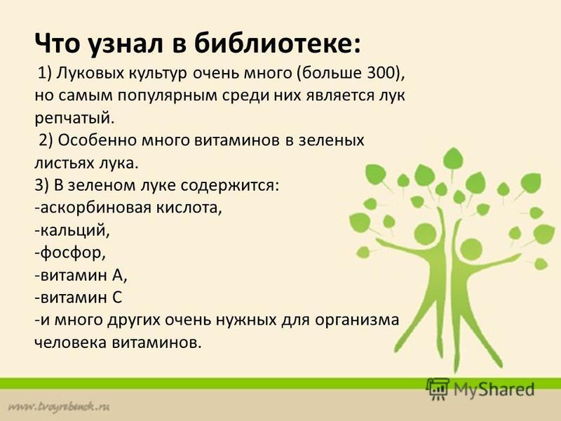 Что узнал в библиотеке: 1) Луковых культур очень много (больше 300), но самым популярным среди них является лук репчатый. 2) Особенно много витаминов в зеленых листьях лука. 3) В зеленом луке содержится: -аскорбиновая кислота, -кальций, -фосфор, -вит