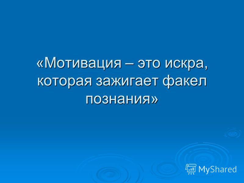 «Мотивация – это искра, которая зажигает факел познания»