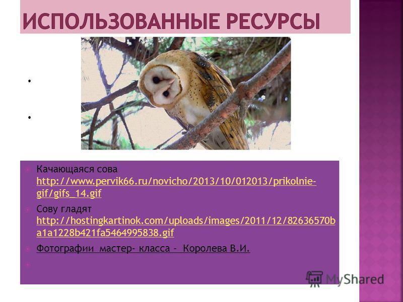 Качающаяся сова http://www.pervik66.ru/novicho/2013/10/012013/prikolnie- gif/gifs_14. gif http://www.pervik66.ru/novicho/2013/10/012013/prikolnie- gif/gifs_14. gif Сову гладят http://hostingkartinok.com/uploads/images/2011/12/82636570b a1a1228b421fa5