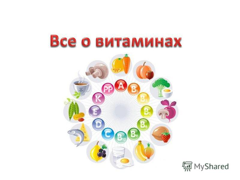 правильное питание режим дня по часам