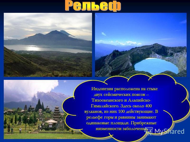 Индонезия расположена на стыке двух сейсмических поясов – Тихоокеанского и Альпийско- Гималайского. Здесь около 400 вулканов, из них 100 действующие. В рельефе горы и равнины занимают одинаковые площади. Прибрежные низменности заболочены. Индонезия р