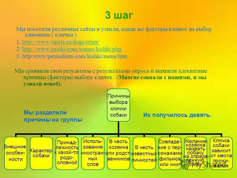 3 шаг Мы посетили различные сайты и узнали, какие же факторы влияют на выбор кинонима ( клички ) 1. http://www/ispets.ru/dogs/other/http://www/ispets.ru/dogs/other/ 2. http://www/pesiki/com/names/kichki.php.http://www/pesiki/com/names/kichki.php 3. h