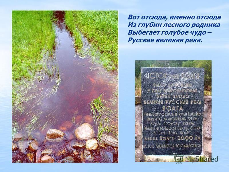 Вот отсюда, именно отсюда Из глубин лесного родника Выбегает голубое чудо – Русская великая река.