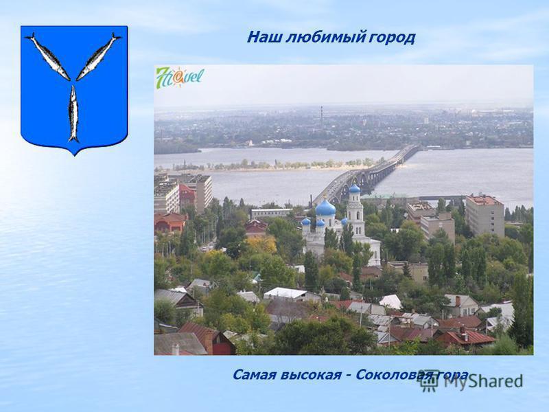 Наш любимый город Самая высокая - Соколовая гора