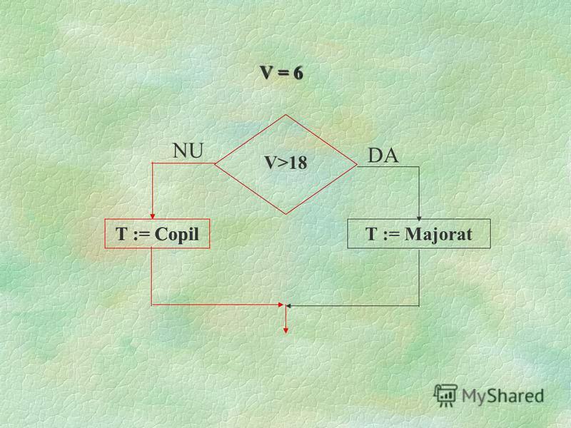 V>18 T : = copilT : = majorat DANU
