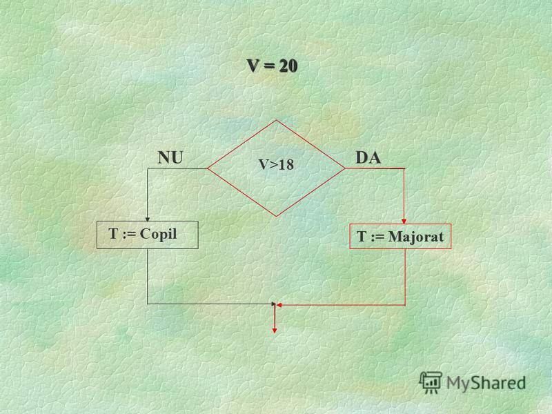 V>18 T := Majorat DA NU V = 6 T := Copil