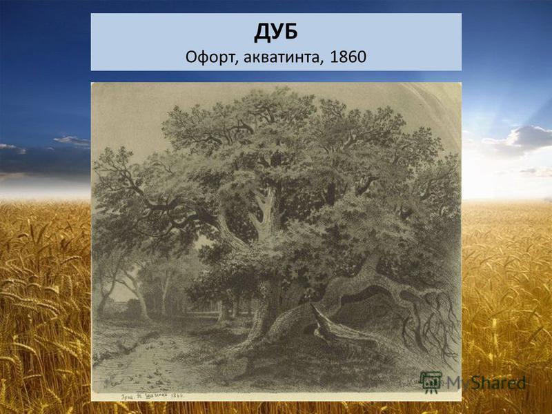 ДУБ Офорт, акватинта, 1860