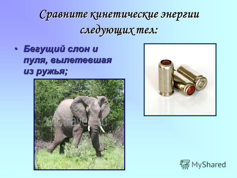 Бегущий слон и пуля, вылетевшая из ружья;Бегущий слон и пуля, вылетевшая из ружья;