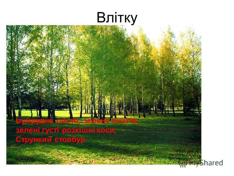 Влітку Ізумрудне листя, зелене плаття, зелені густі розкішні коси, Стрункий стовбур