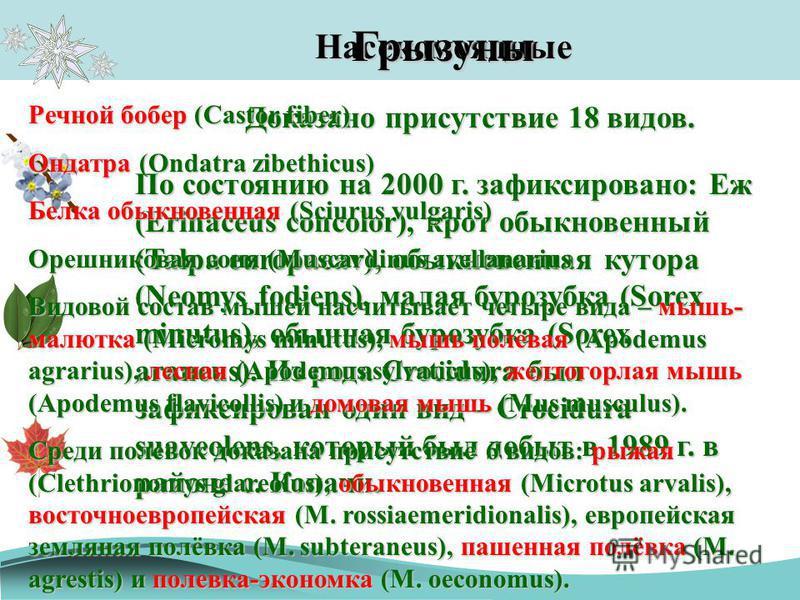 Насекомоядные По состоянию на 2000 г. зафиксировано: Еж (Erinaceus concolor), крот обыкновенный (Talpa europaeav), обыкновенная хутора (Neomys fodiens), малая бурозубка (Sorex minutus), обычная бурозубка (Sorex araneus). Из рода Crocidura был зафикси