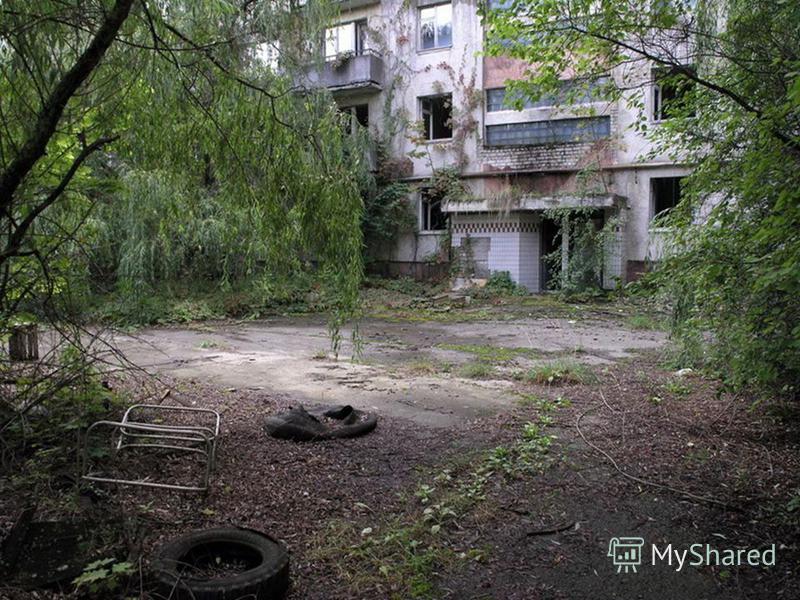 Чернобыль - это самый эффективный