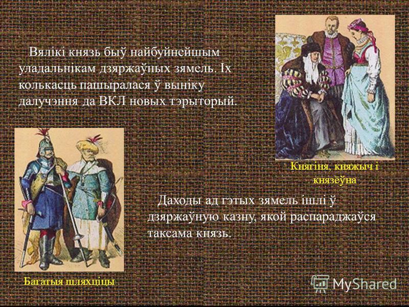 Даходы ад гэтых зямель ішлі ў дзяржаўную казну, якой распараджаўся таксама князь. Вялікі князь быў найбуйнейшым уладальнікам дзяржаўных зямель. Іх колькасць пашыралася ў выніку далучэння да ВКЛ новых тэрыторый. Багатыя шляхціцы Княгіня, княжыч і княз