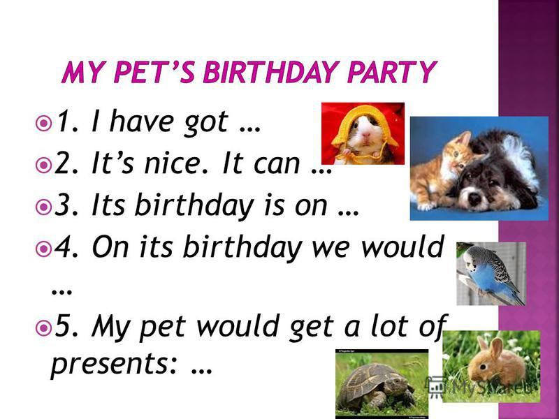 1. I have got … 2. Its nice. It can … 3. Its birthday is on … 4. On its birthday we would … 5. My pet would get a lot of presents: …