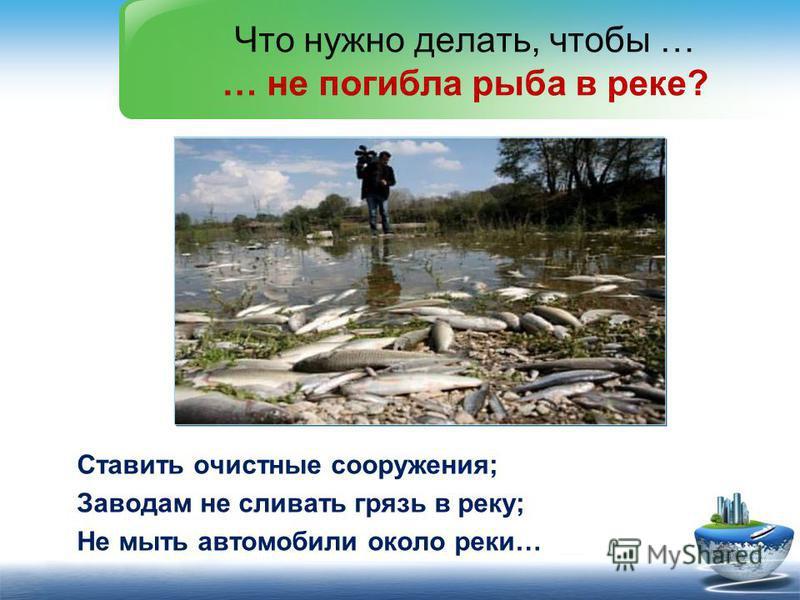 Ставить очистные сооружения; Заводам не сливать грязь в реку; Не мыть автомобили около реки… Что нужно делать, чтобы … … не погибла рыба в реке?